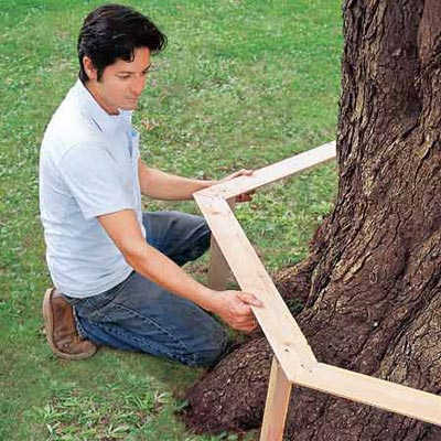 Mark Powers uses a template to check tree bench measurements against the tree