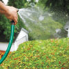 watering the green roof