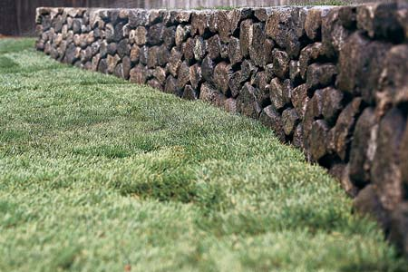 a newly sodded lawn