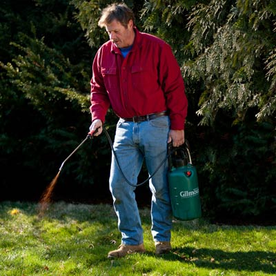 Roger Cook sprays compost tea on a lawn with a pump sprayer