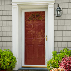 a front door with a storm door