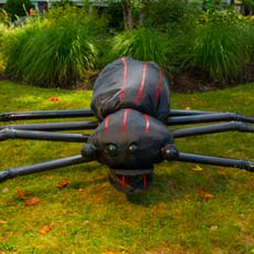 giant halloween spider in yard