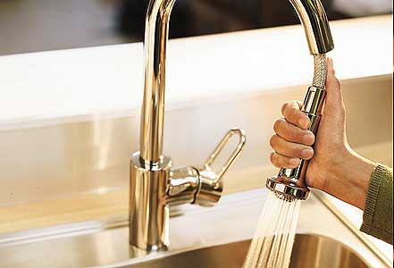Pull-Out Faucet Tout