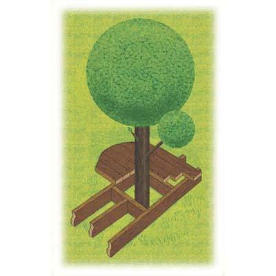 Deck Tree Alt Jpg
