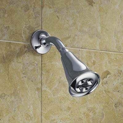 Water-saving showerhead from Delta