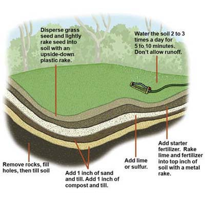 Diagram: lawn layers