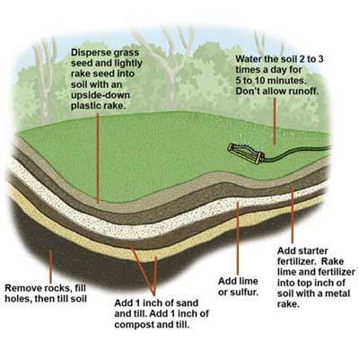Diagram: lawn layers