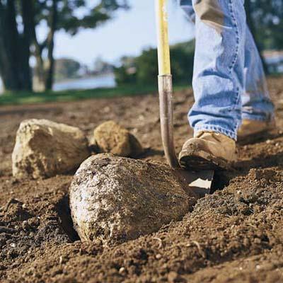 Removing rocks
