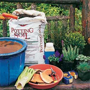 container garden essentials